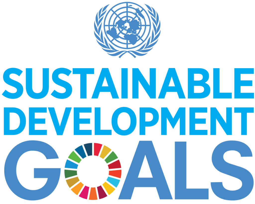 What are the five sustainable development goals?